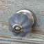 Kapinupp hallikassinine, D3cm